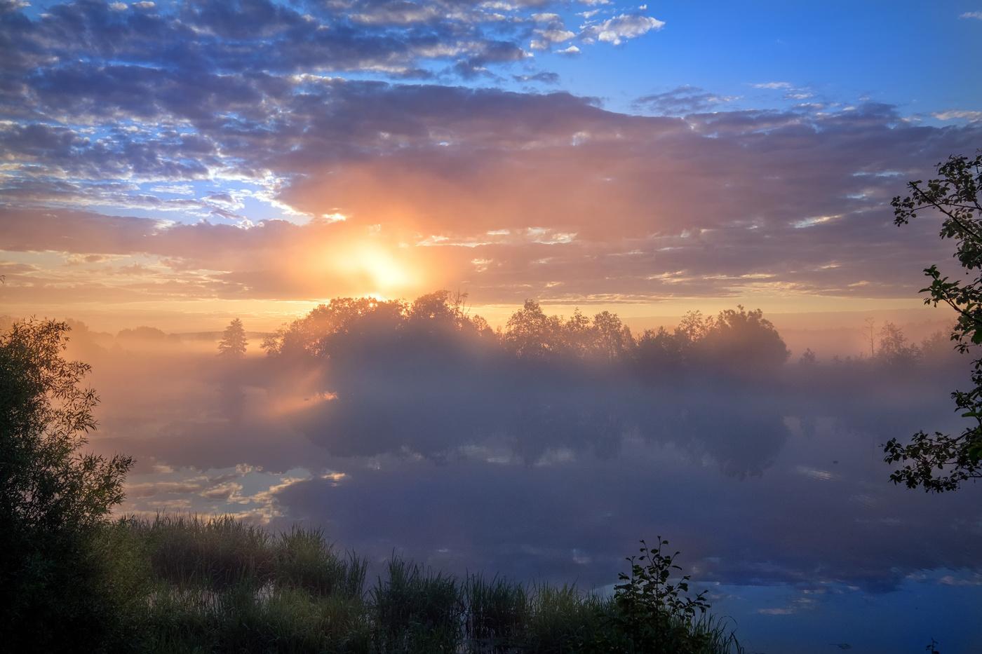 Злобное солнце фото проливным венки