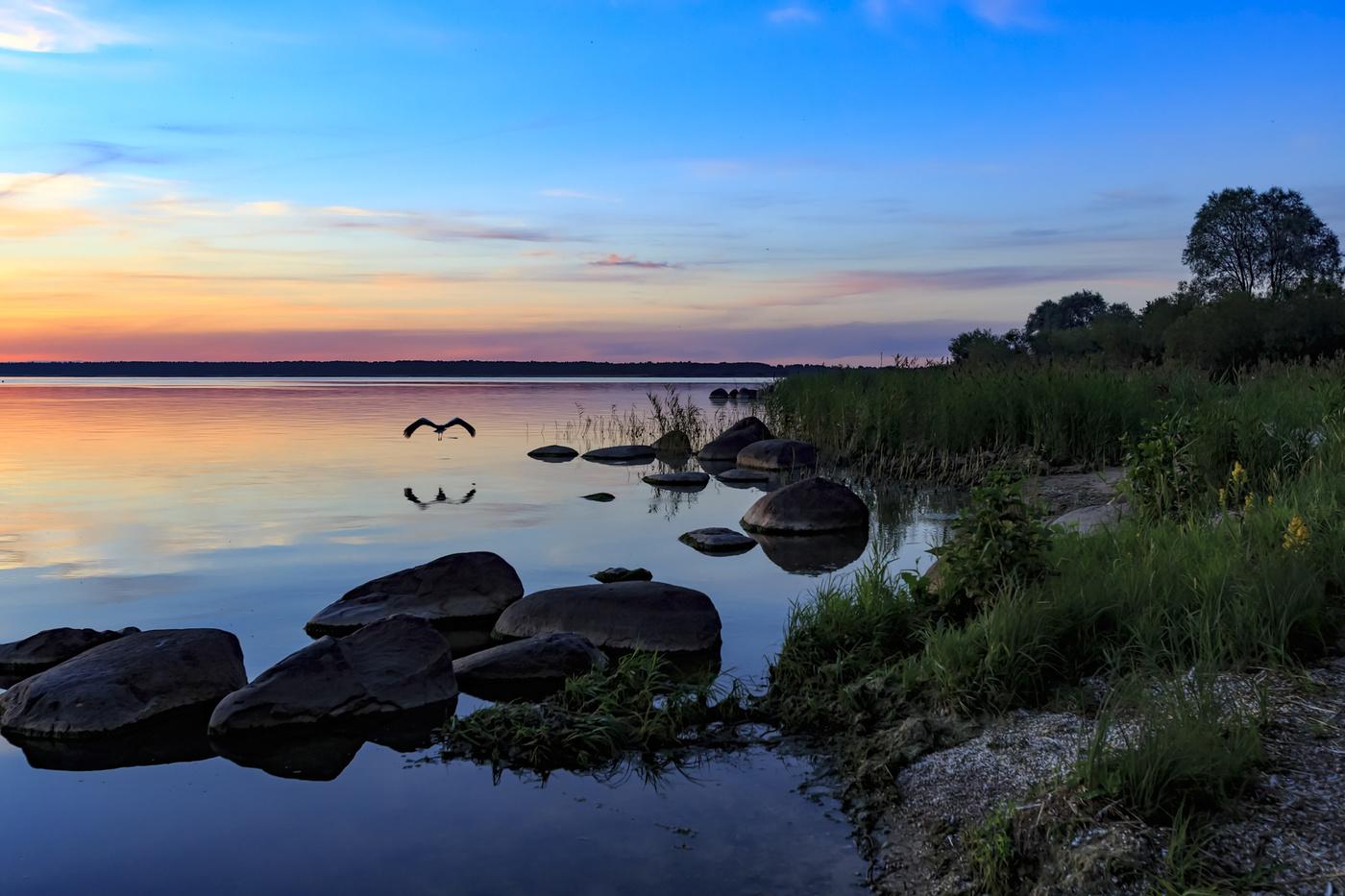 парк чудское озеро фото картинки большим удовольствием