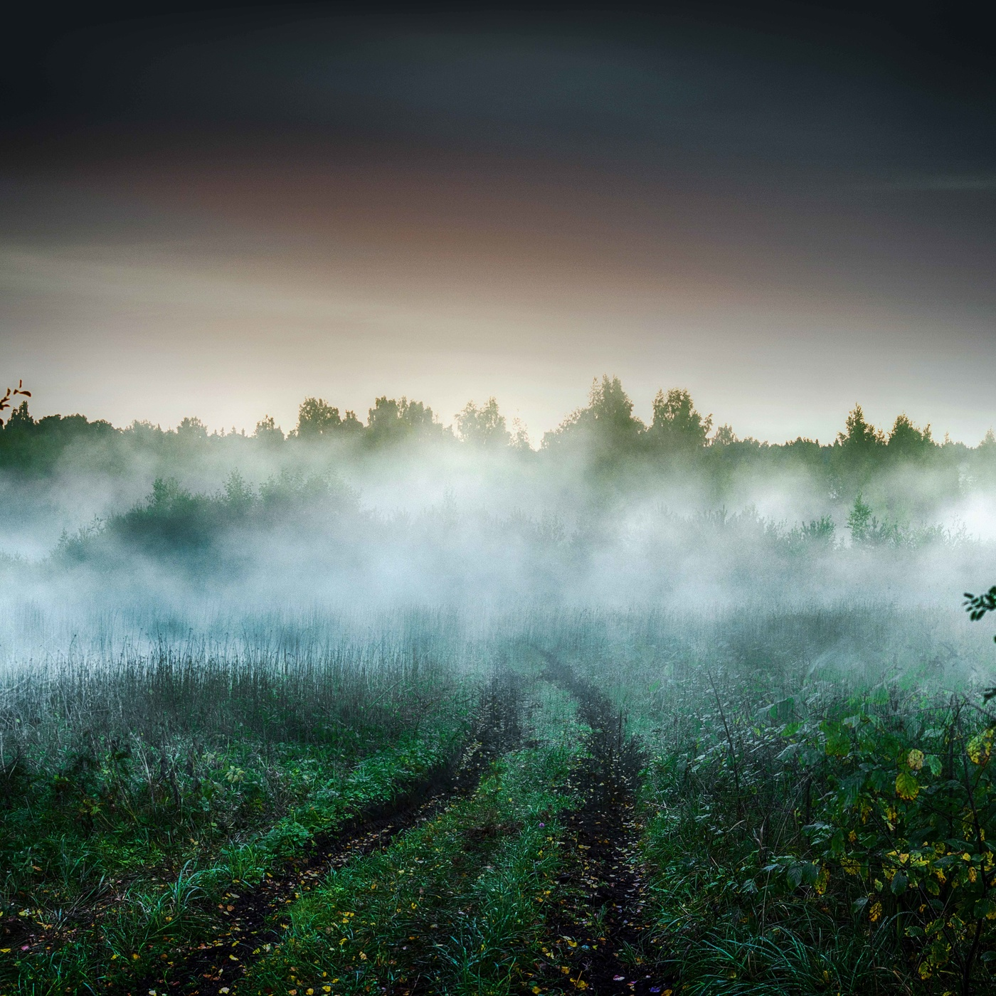 понадобится картинки иллюстрации туман которых