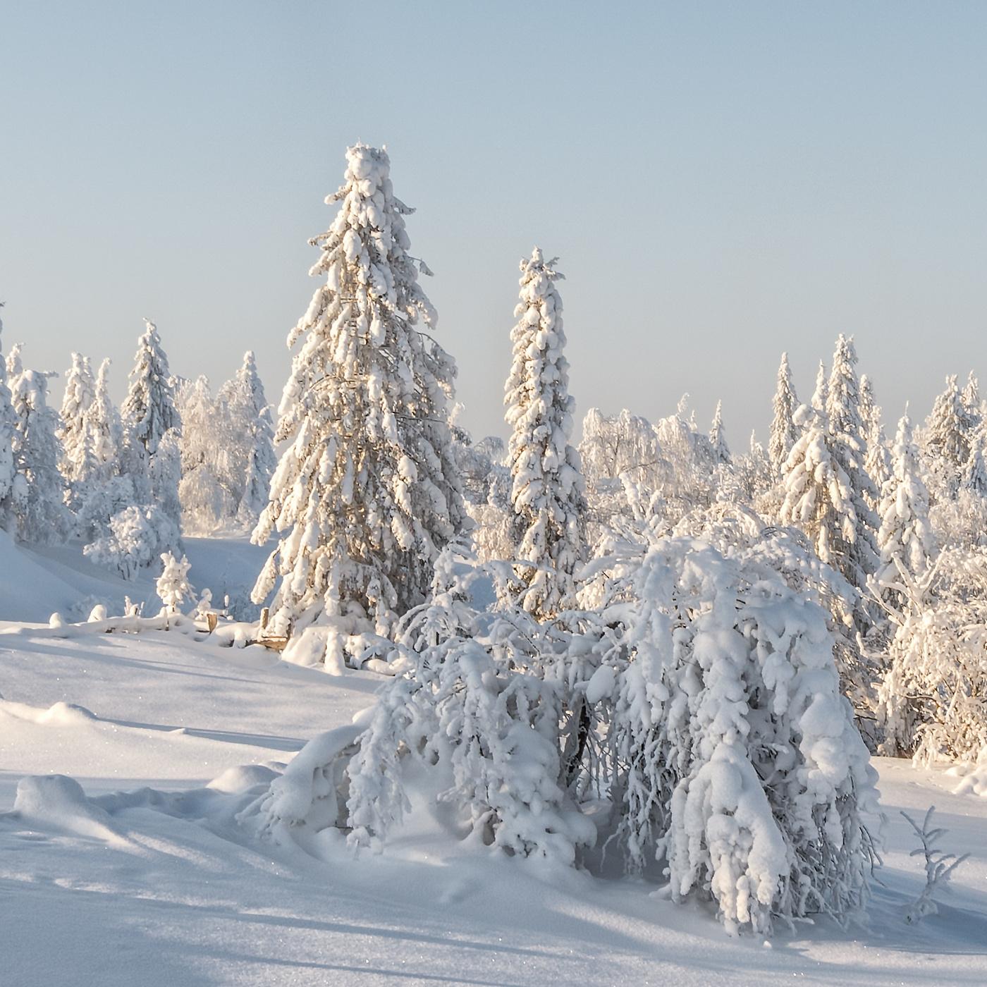 Фасоны зимних юбок фото почему