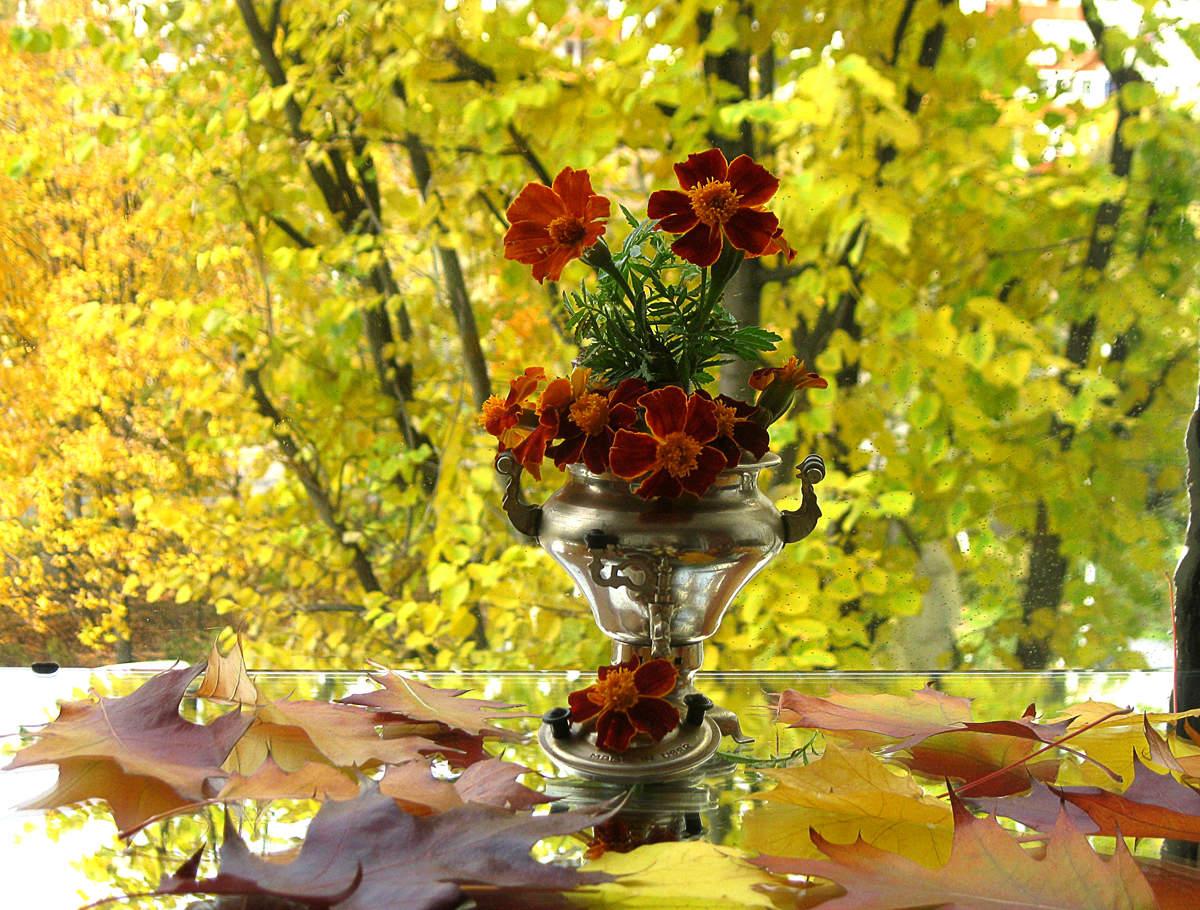 Красивые картинки с осенними цветами для вдохновения и хорошего настроения, открытки добрым утро