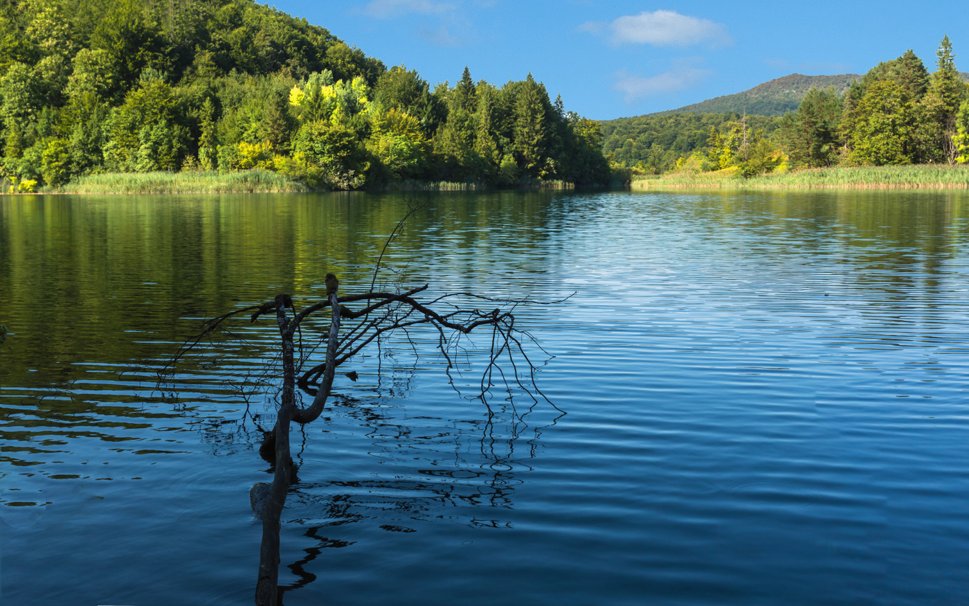 картинки озерского края такая нас получилась