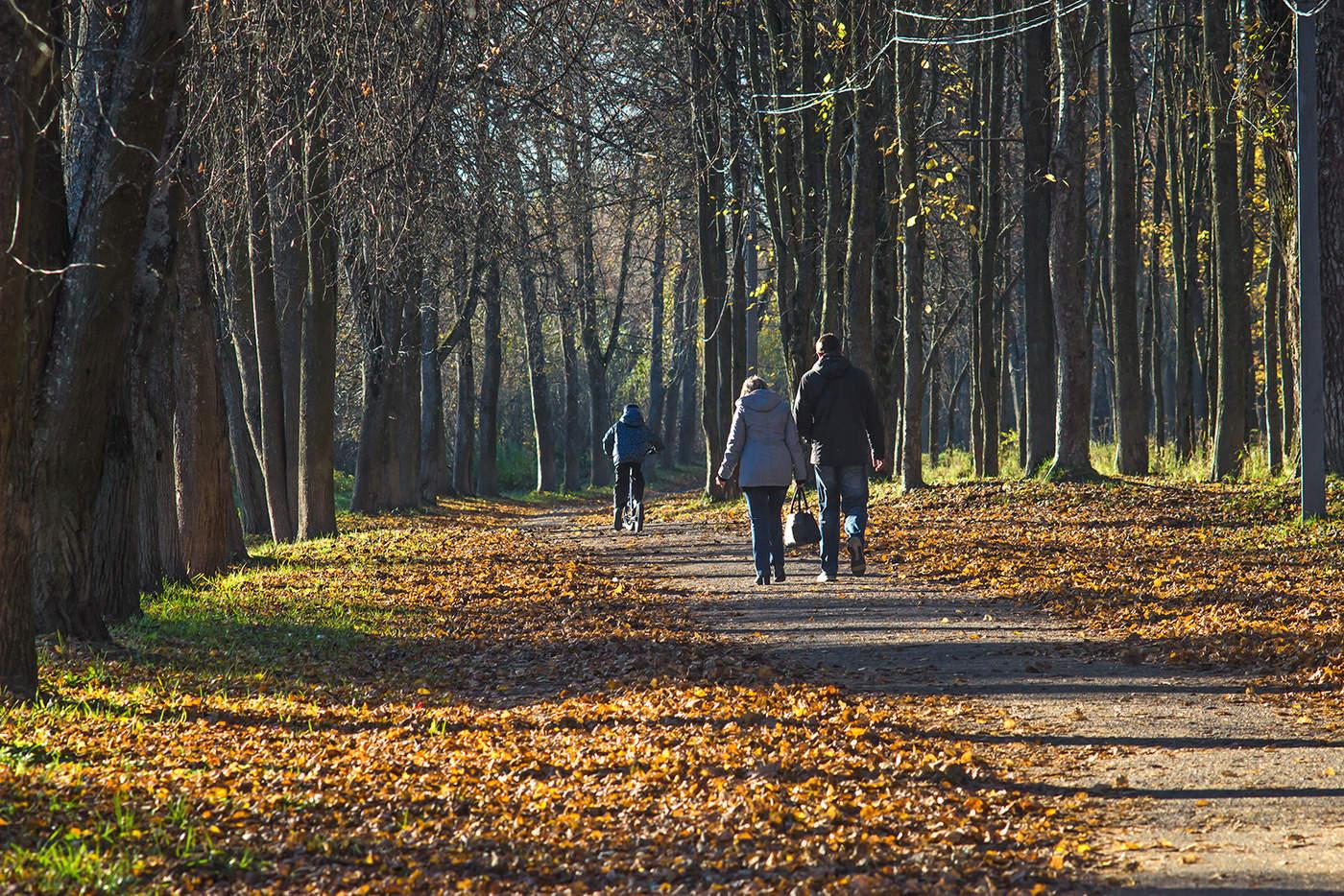 человек гуляет в парке картинка видно больше
