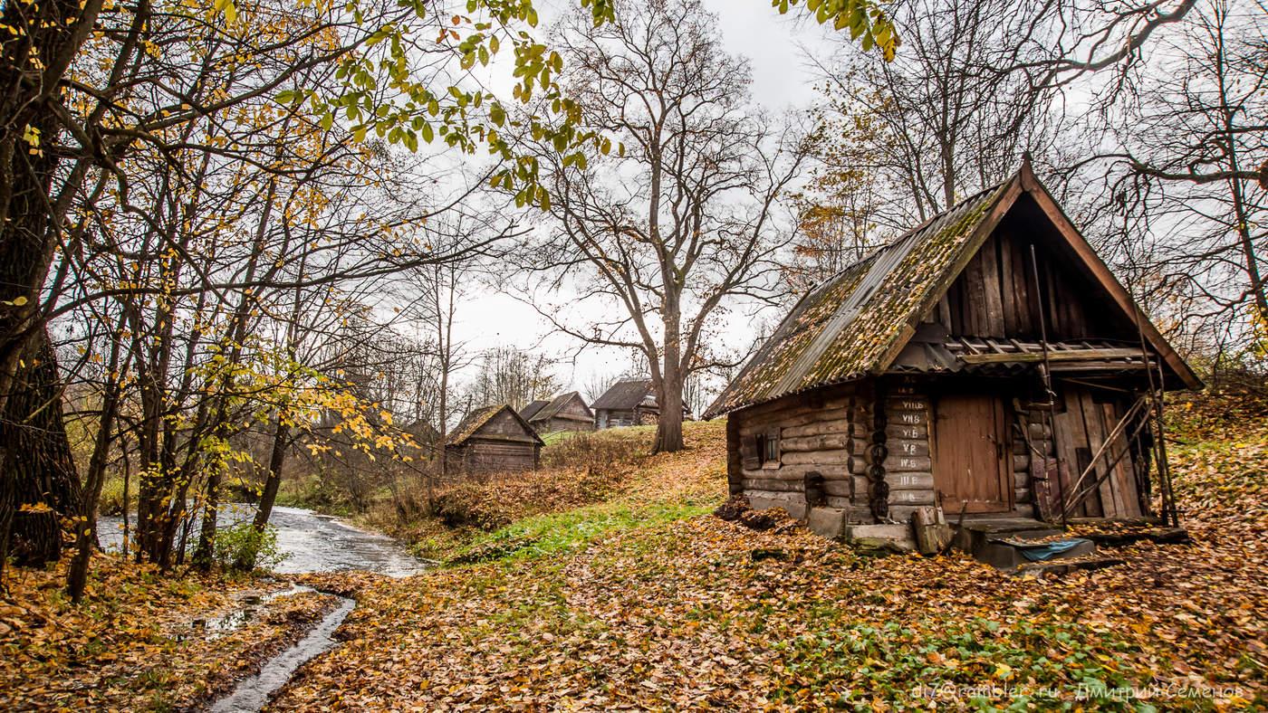 дом на окраине леса картинки нашем понимании женская