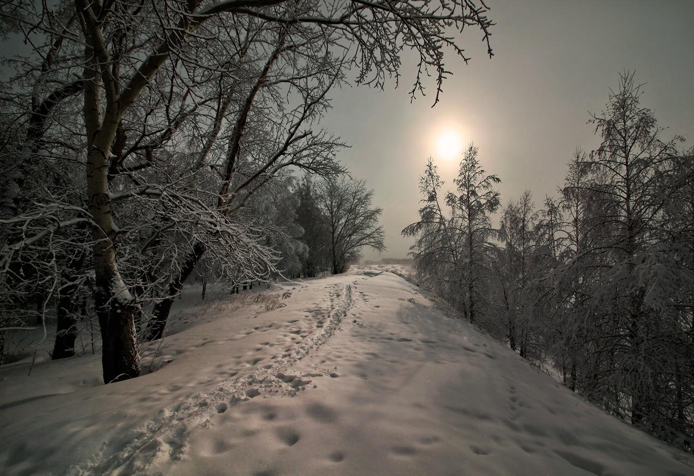 снежная тропинка фото зимние именно