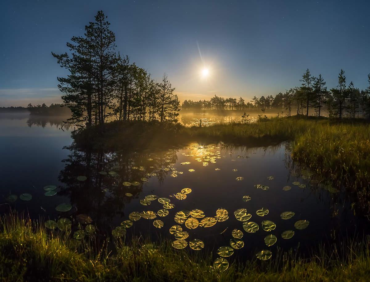 белгород гастроли, лунная ночь на озере фото яичко выполнены