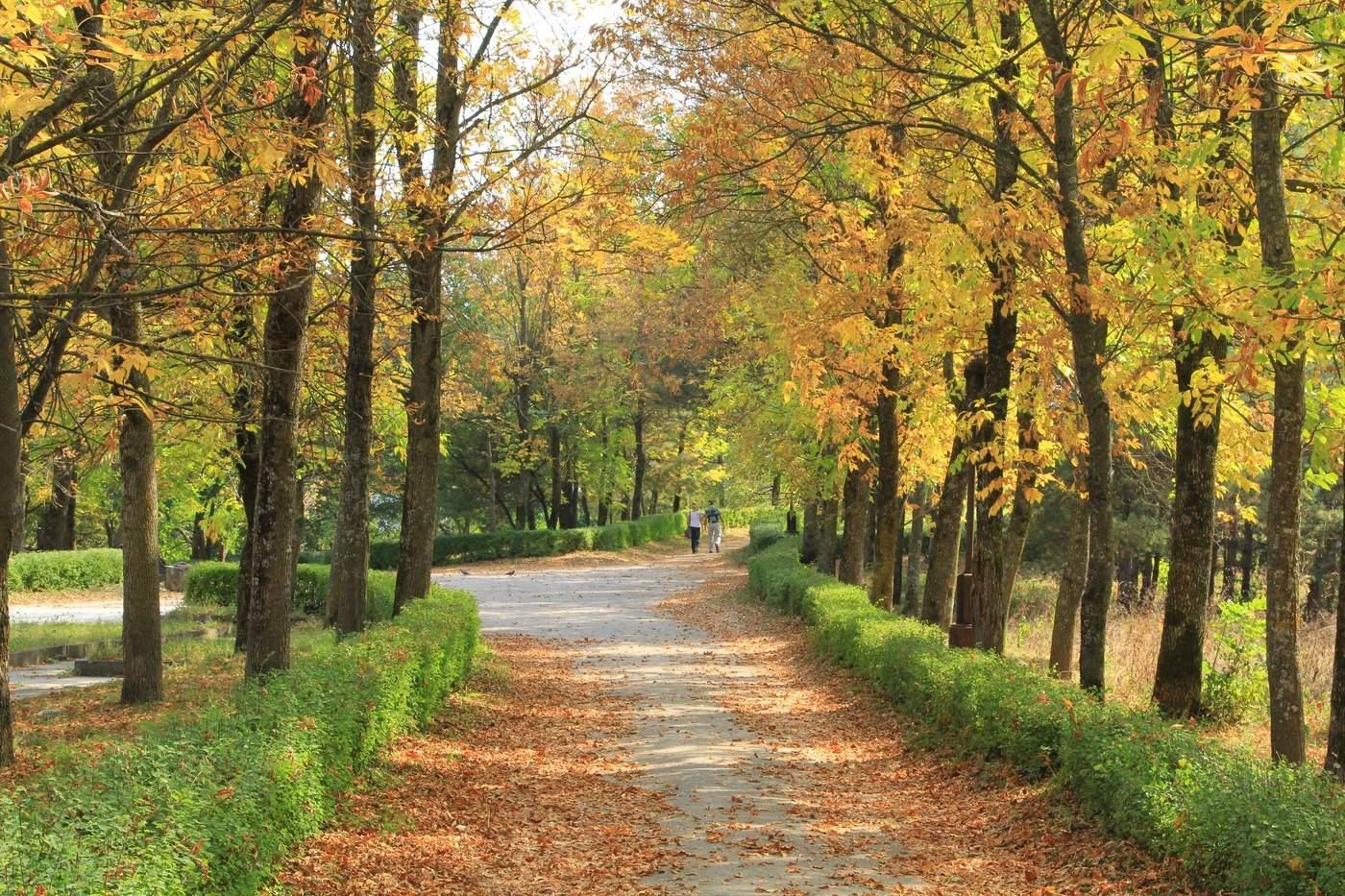 Картинки кисловодска осенью, ореховый спас
