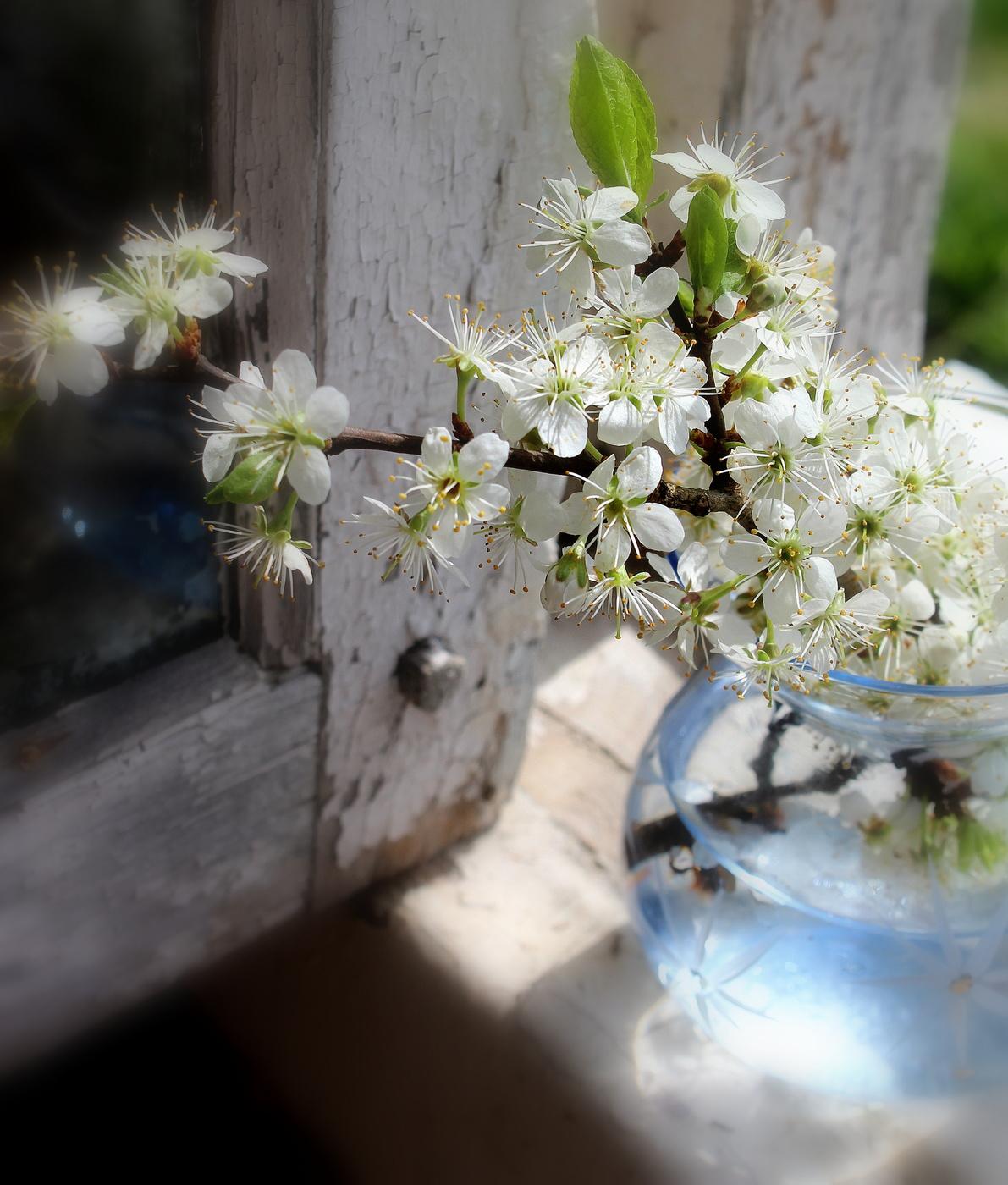 этажи дыхание весны фото захватите