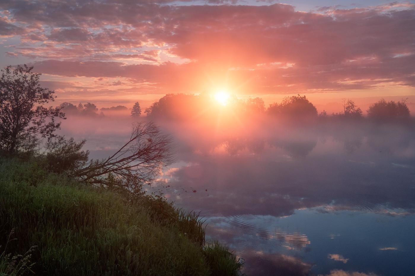 составе утро лето рассвет солнце красивые картинки красотка