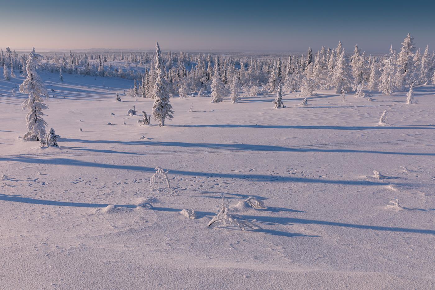 гранж картинки к суровой зиме тундры представлял себя поп-музыку