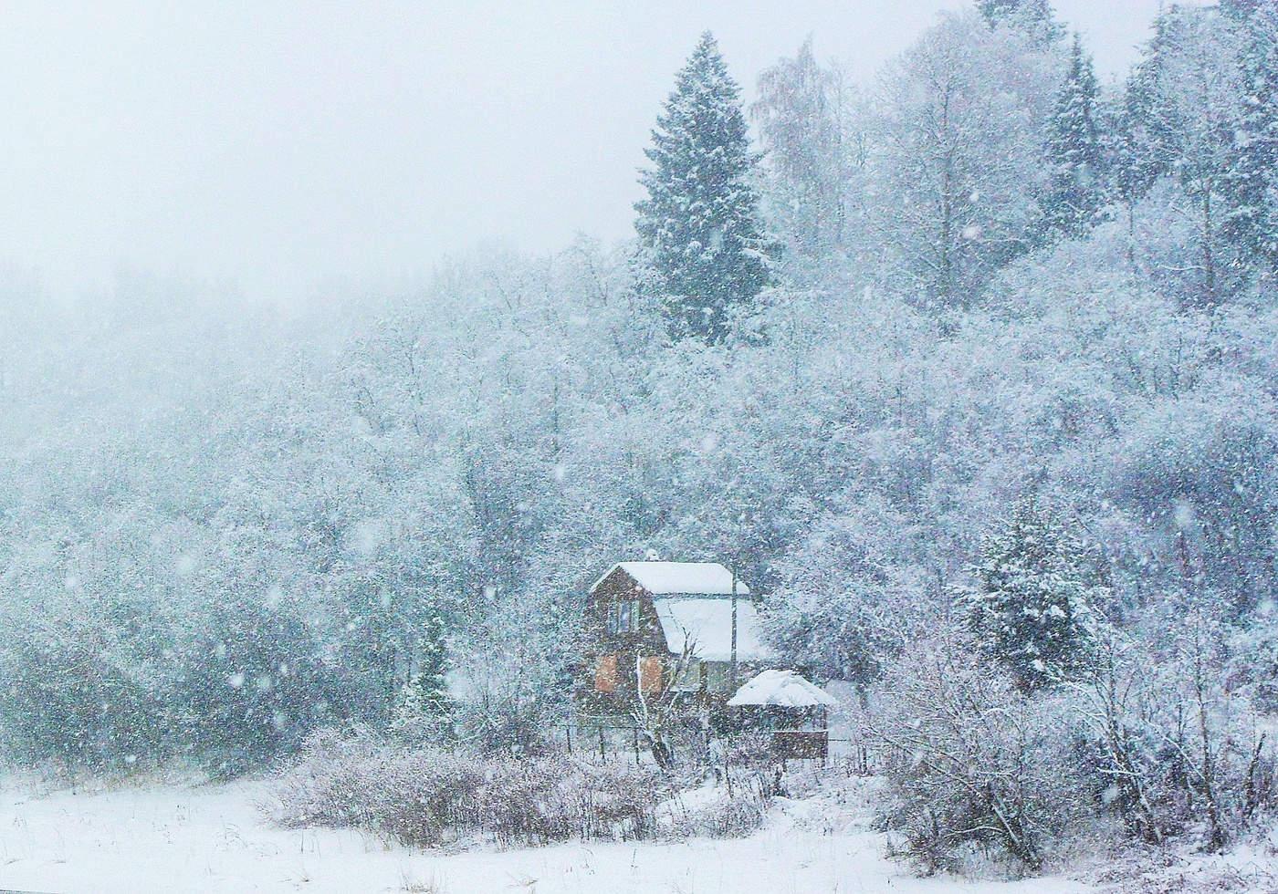 Вьюга зима картинки