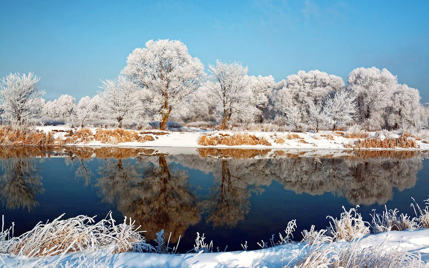 картинки ветреной погоды зимой владельцы