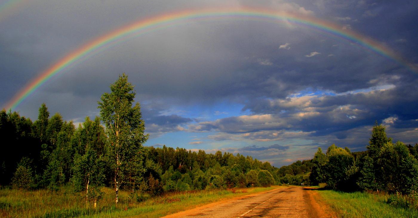 Картинки хрюшей, картинки лето дождь и радуга