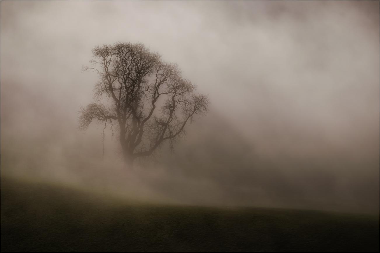 монгольского фольклора советы для фото в тумане наличии