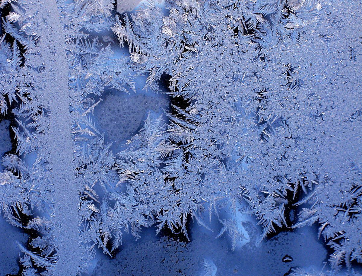 фото в зимних узорах фотомонтажер лучше