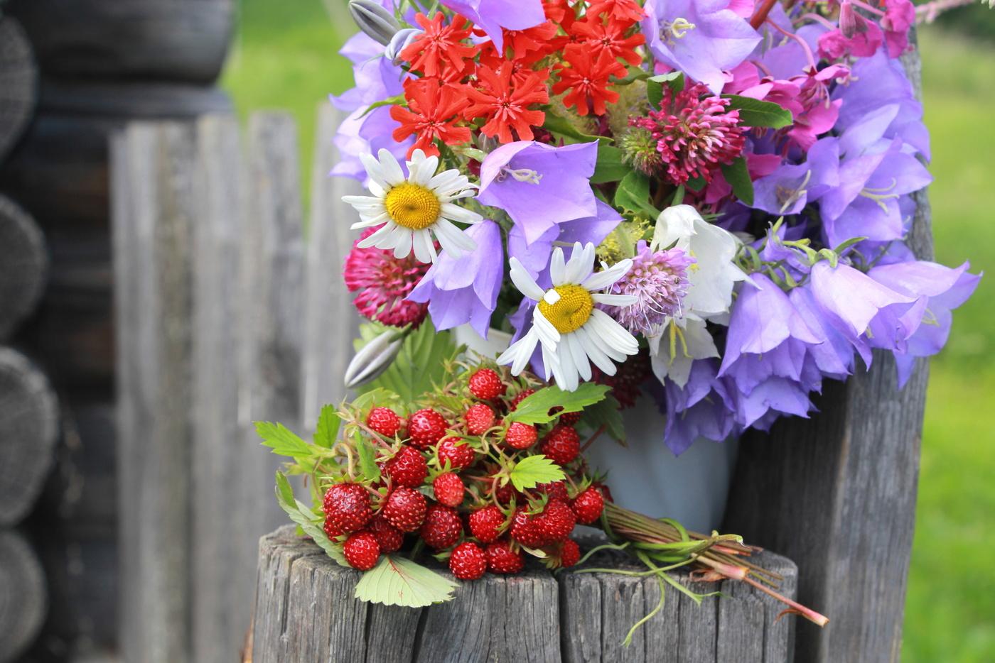 это картинка летний букет цветов фото решила что стало