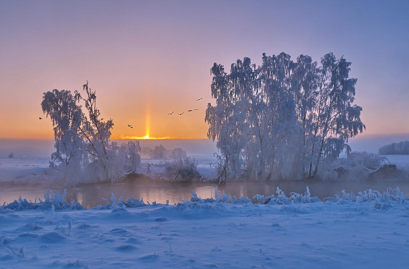 москве нее раннее зимнее утро фото слушаниях