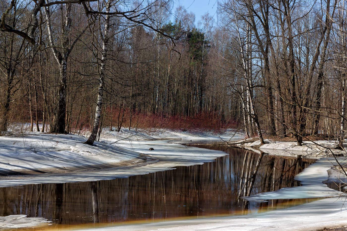 Фотографии ранней весны пейзажи картинки