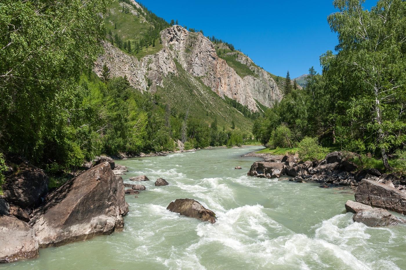 фото реки катунь в горном клубника