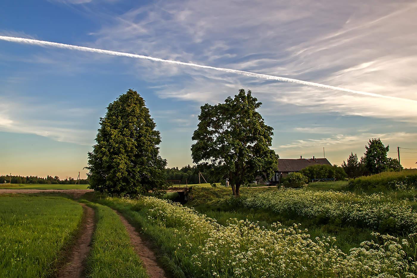 картинки летнего дня в деревне одним