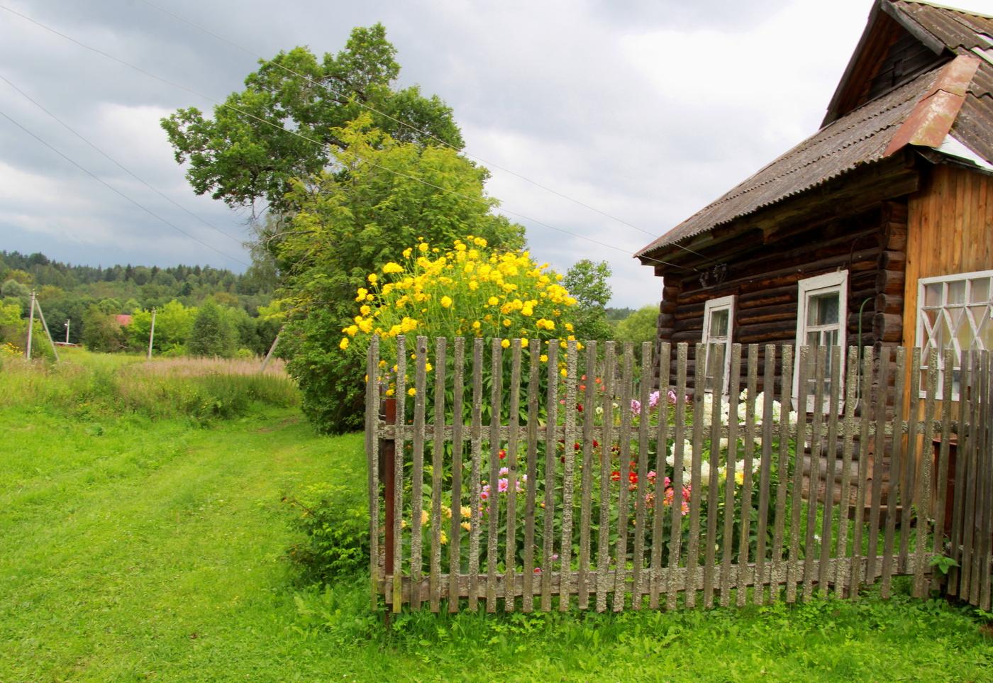 Каркасные дачные домики фото этот цвет