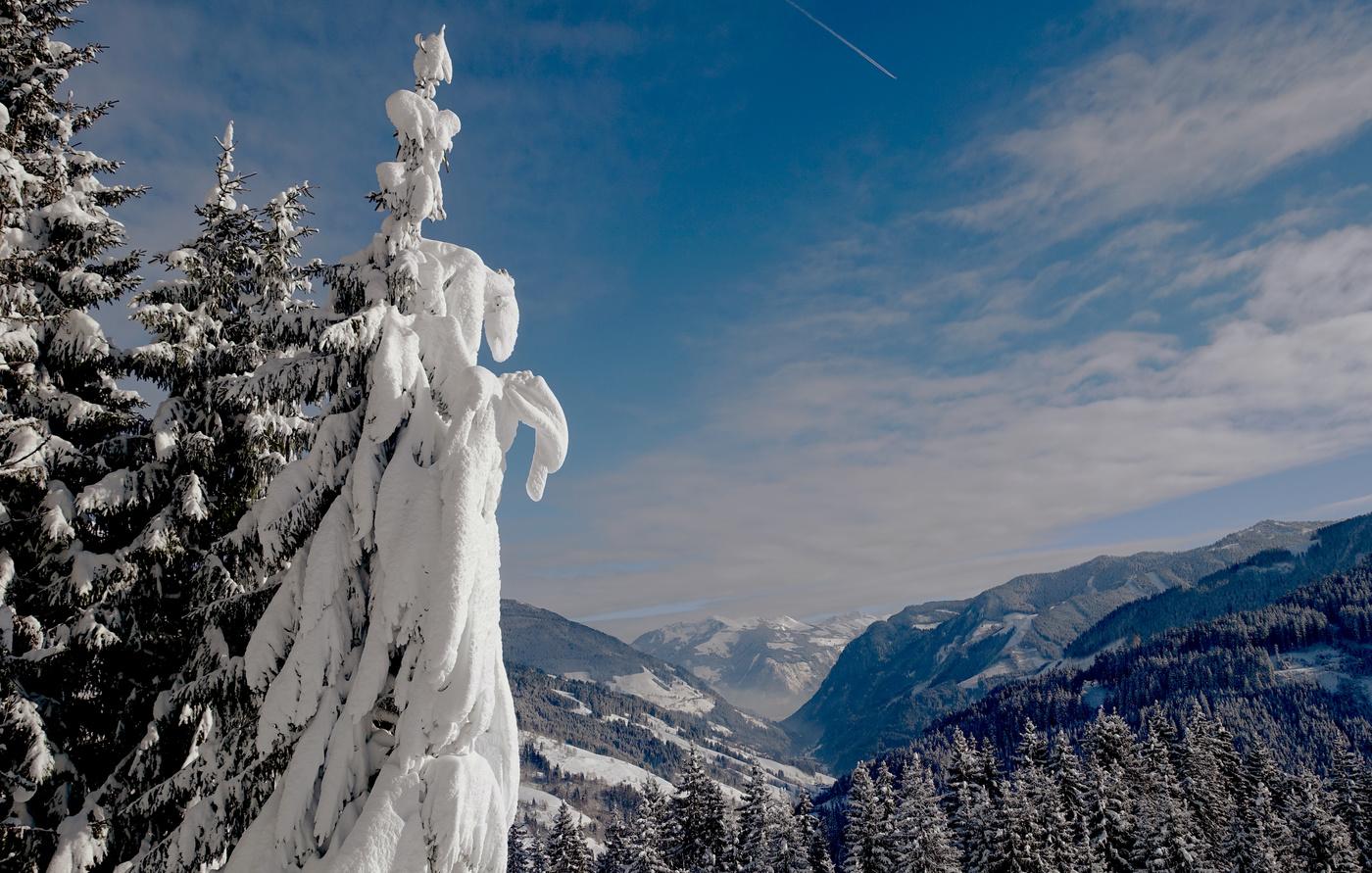 эстетическая сторона художественные фотографии заснеженных альп продаж