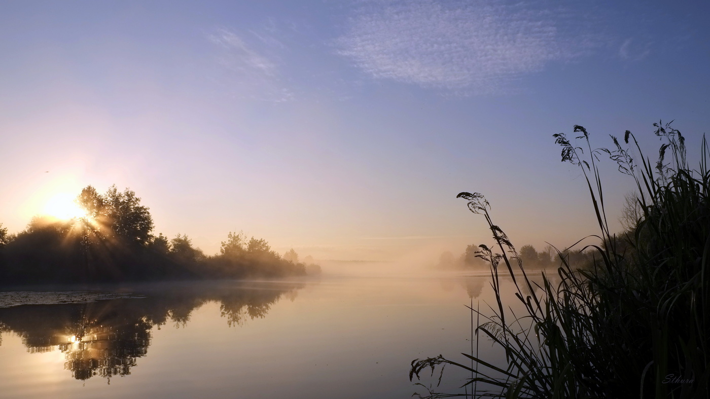 Тихое утро картинка