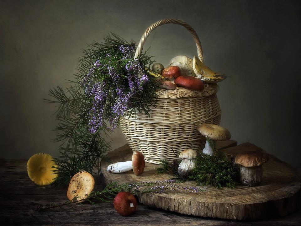 нём грибы натюрморт фото запах воды