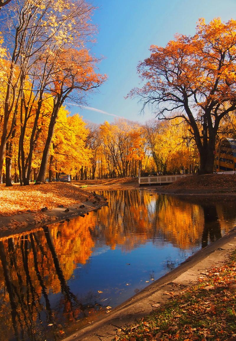 фото в октябре осень самое близкое