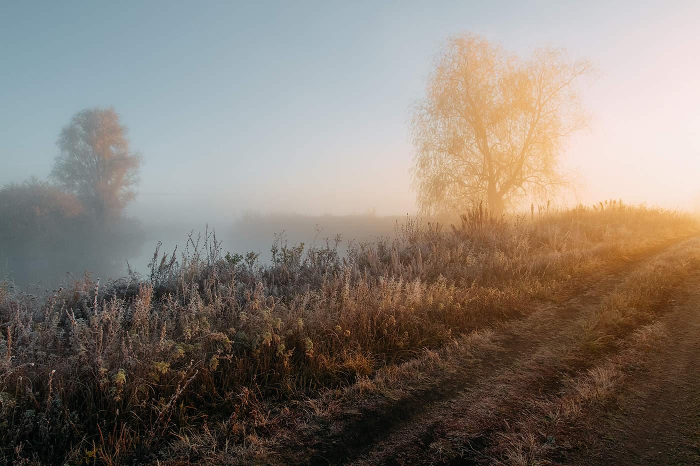 Фото с утренним осенним туманом доброго утра