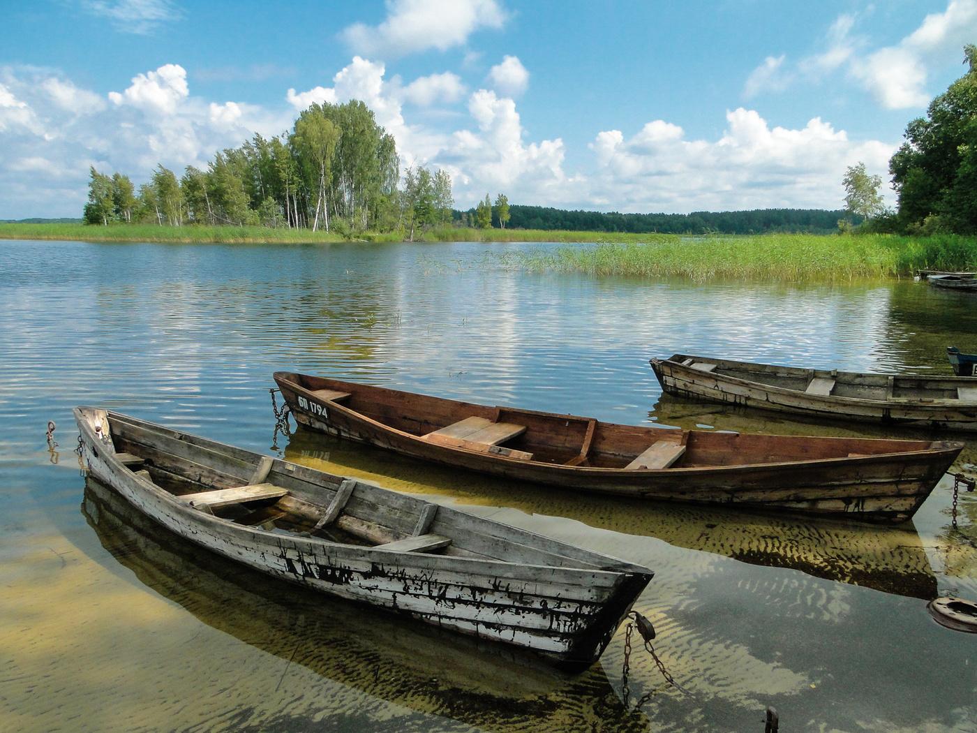 декоративные картинки браславских озер пользователи покупают