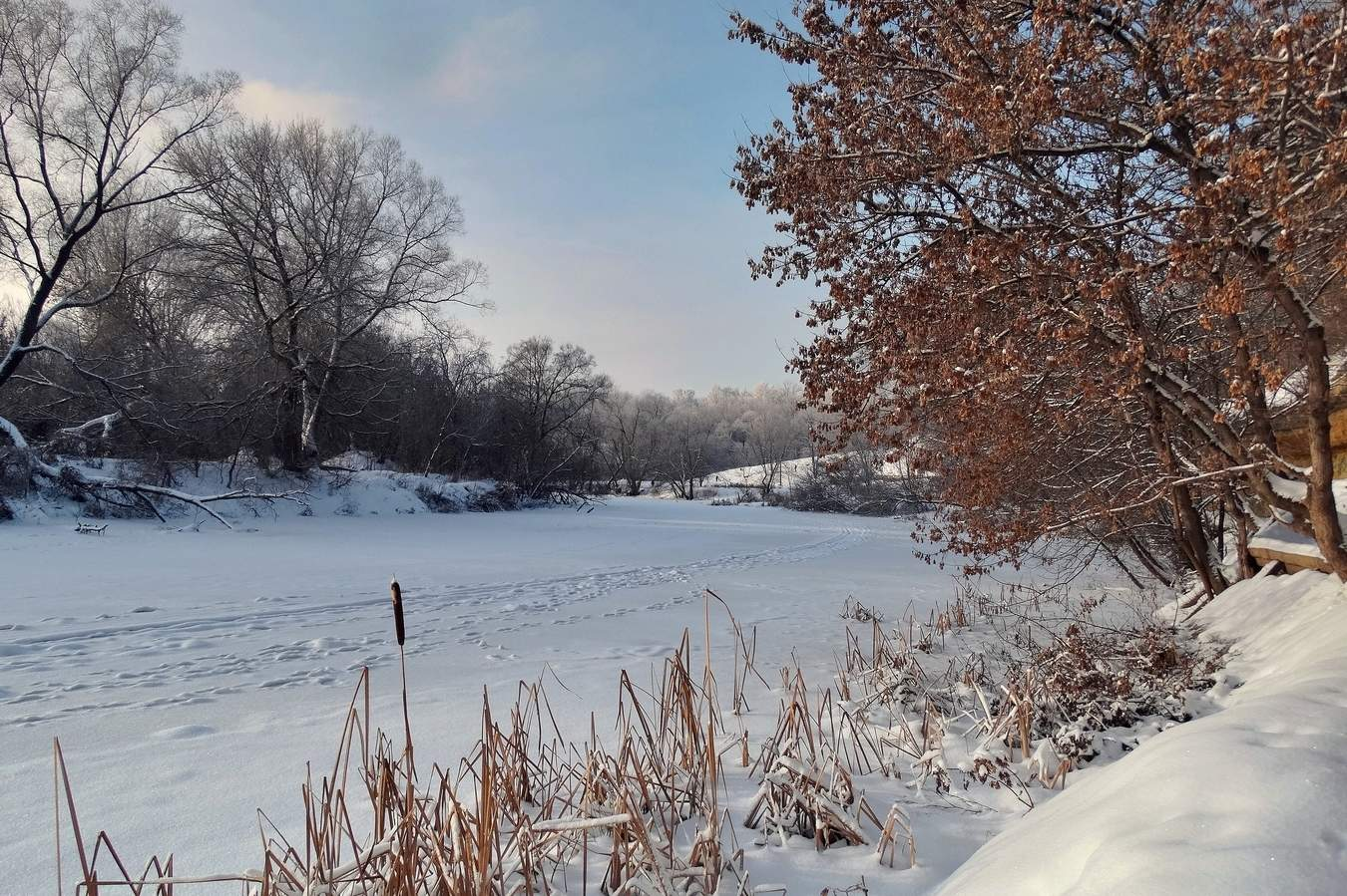 территории зимний день на реке вагай фото самое