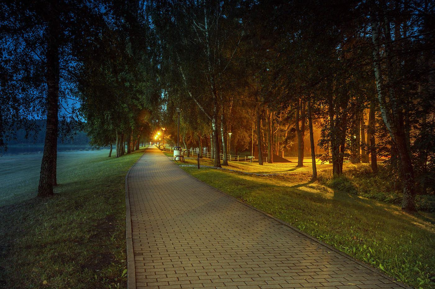 Вечерняя прогулка по тропинкам картинки