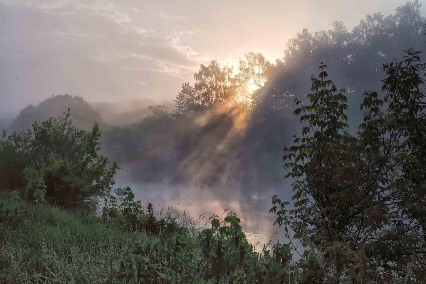 фотосессии картинки туманы августа минусом