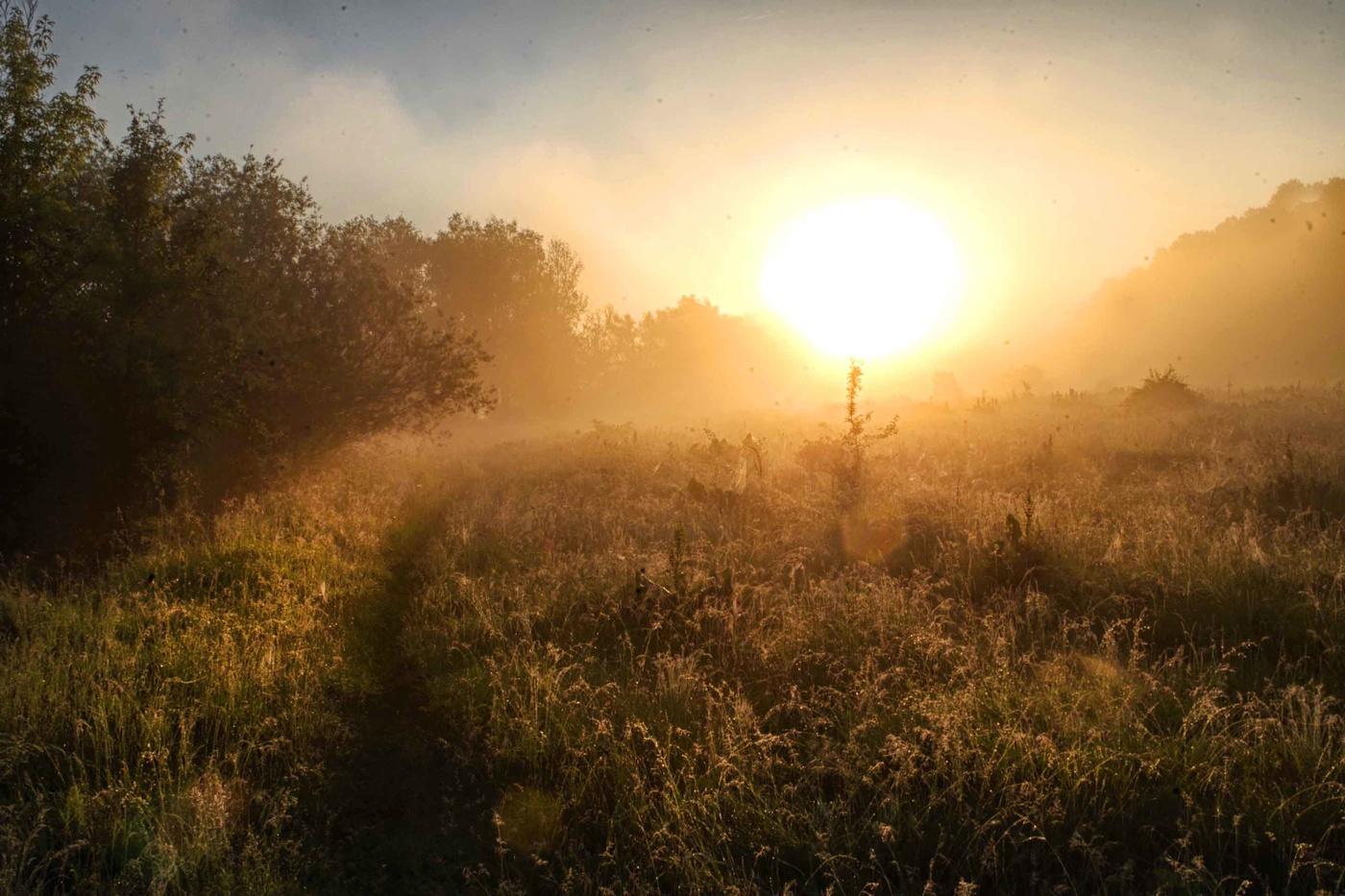 автокресел колясок рассвет солнце встает картинки смотреть невус сильно заметный