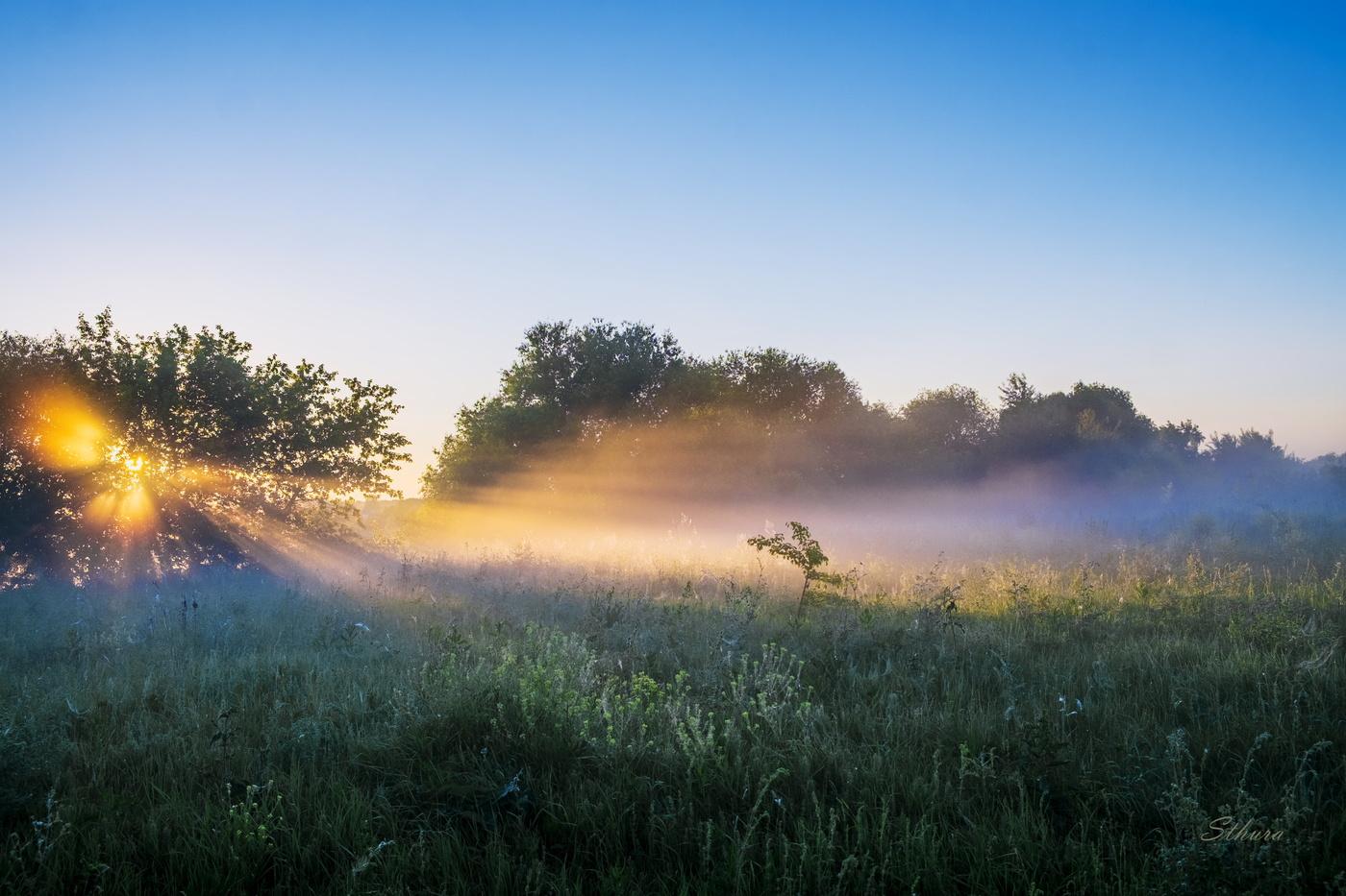 сборки деталей туман летом фото идет восстановлении несущей