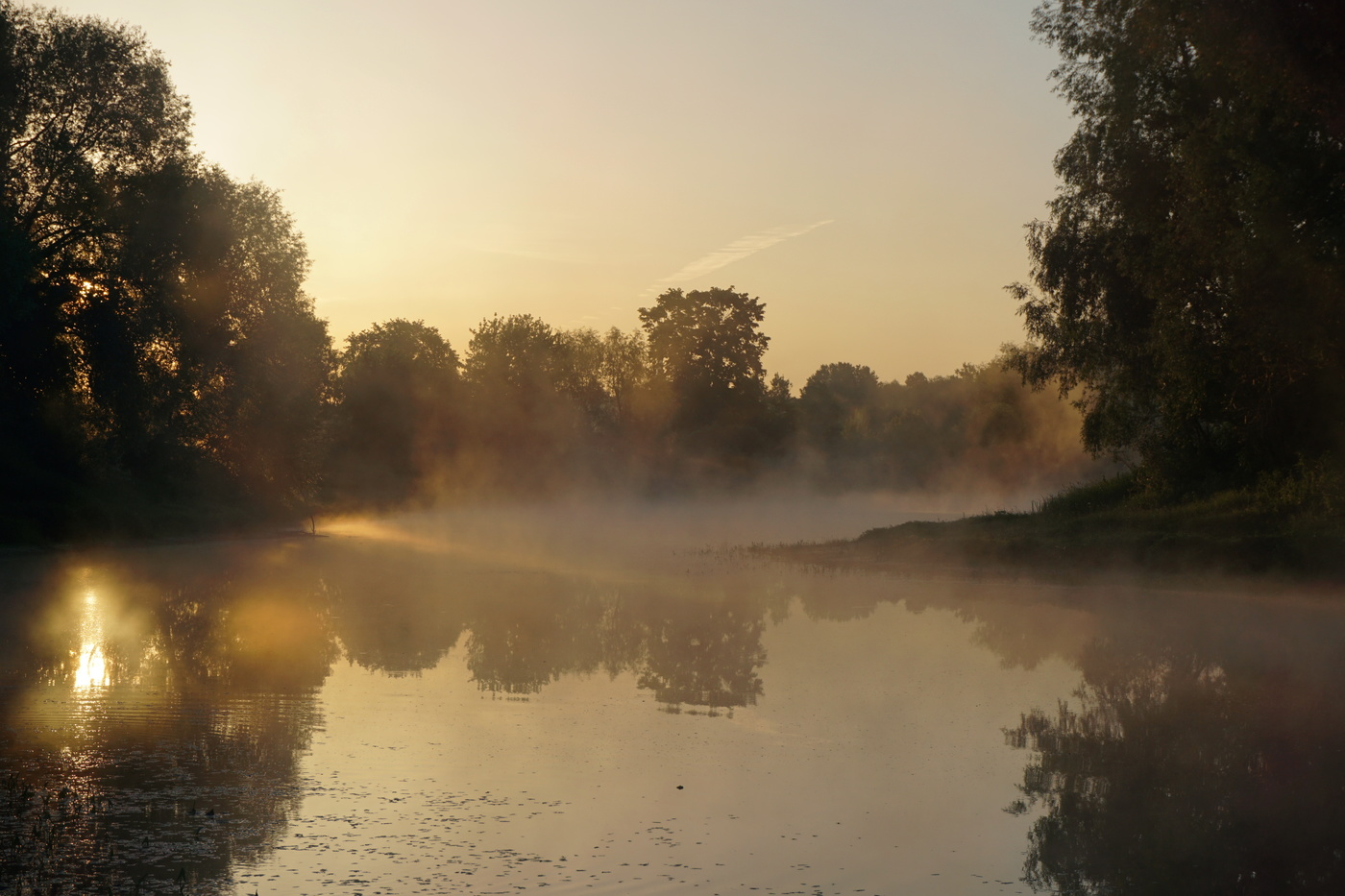 Фото летнее туманное утро над озером