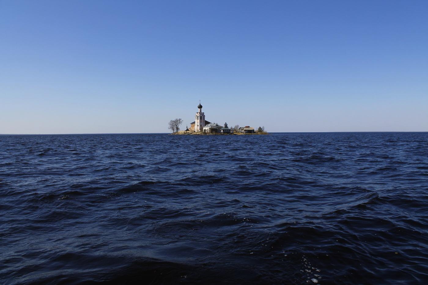 россии, кубенское озеро фото ромашковидная прекрасно