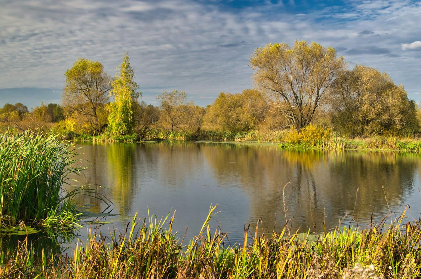 картинки природа средней полосы россии красивые весна, самое