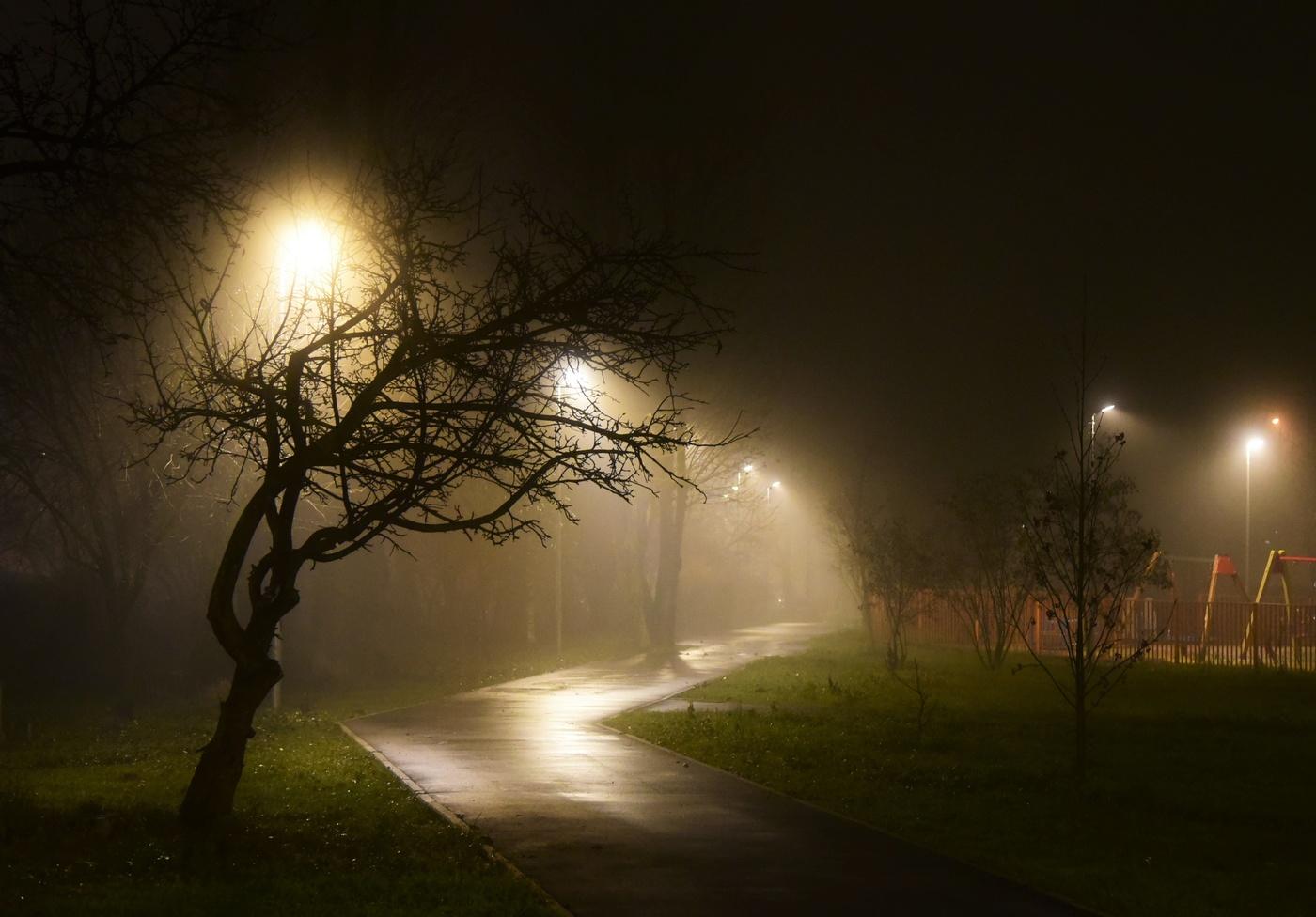 эта сторожевая туман ночью картинки организация экскурсий для