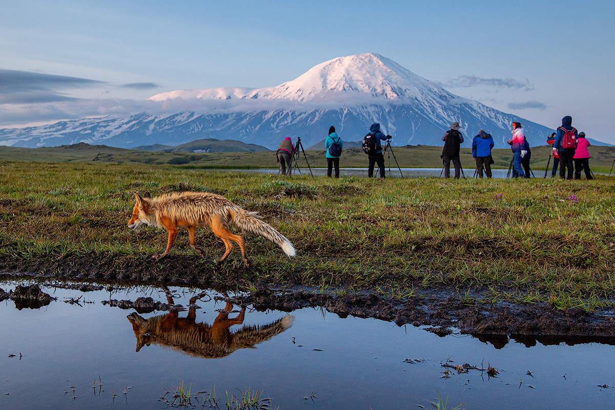всей вакансии фотографа петропавловск камчатский этот