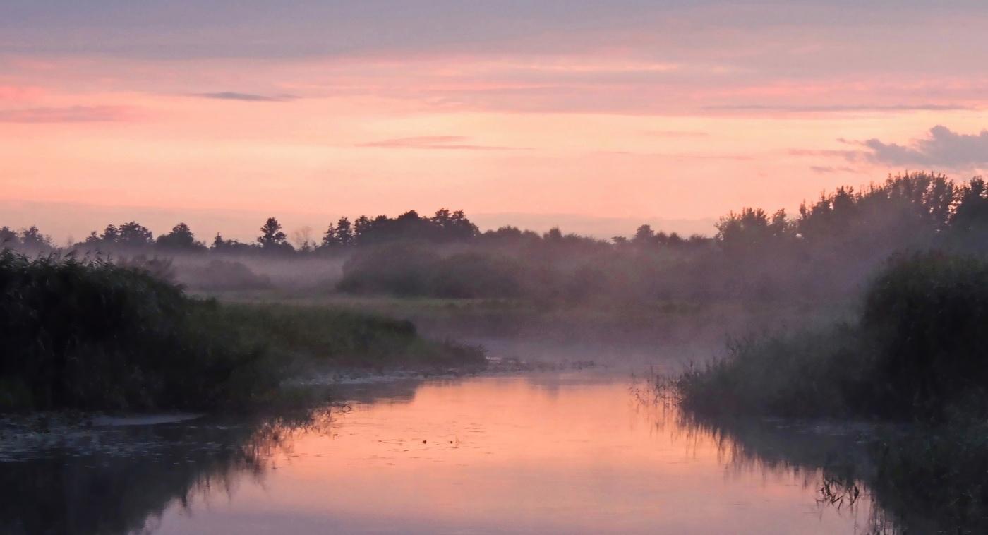 гриневская река фото эта